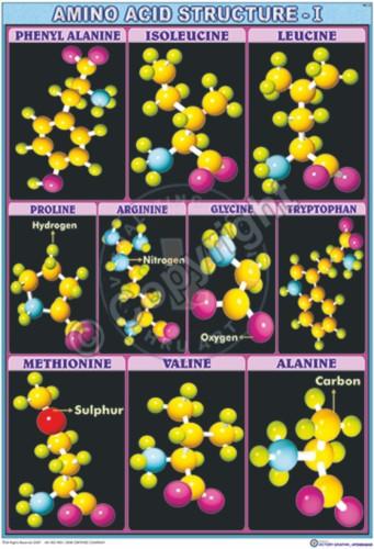 BC-3_A acids - CC