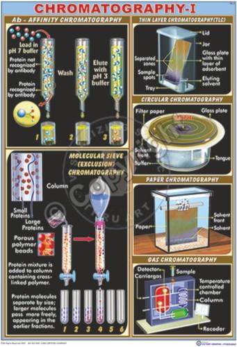 BC-9_Chromatography -I - CC