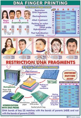 BT-9_DNA F.Printing CC