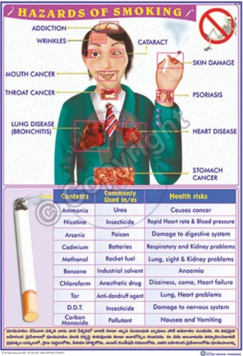 Bi-26_Hazards of Smoking