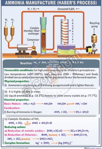 C-11_Ammonia new final-CC