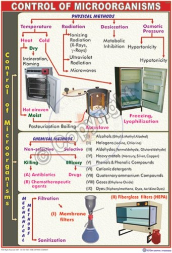MB-29_Control of microorganisms - CC