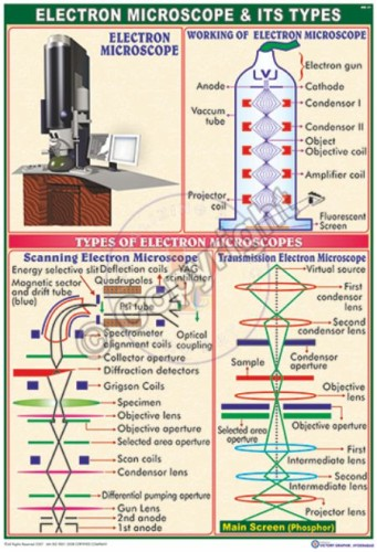 MB-31_Electron mic scp an its types - CC
