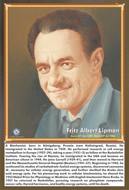 SP-101 FRITZ ALBERT LIPMAN
