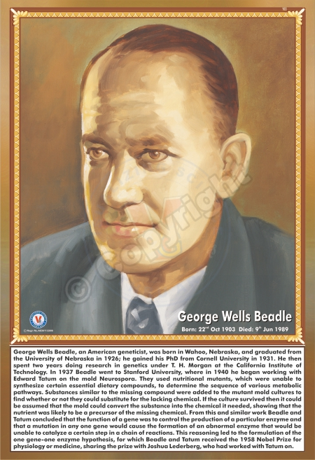 SP-103 GEORGE WELLS BEADLE