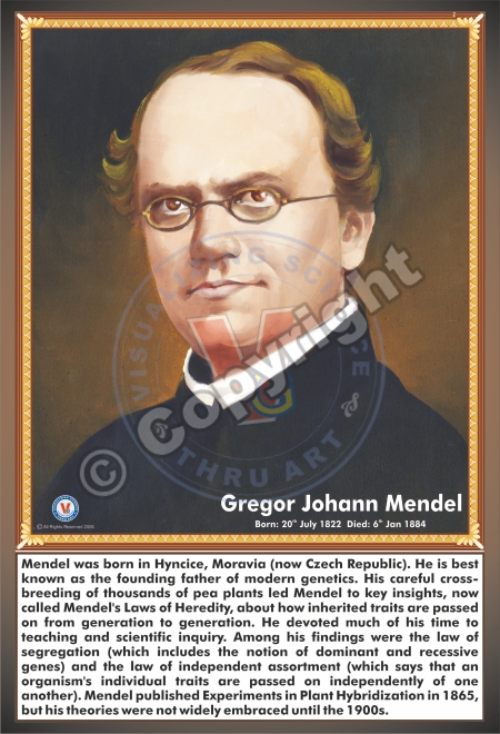a biography of gregor johann mendel a czechoslovakian geneticist Gregor mendel biography and he is widely considered a pioneer in the field of genetics synopsis gregor mendel  gregor johann mendel was born johann.